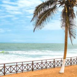 Tema 10 vacation rentals