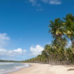 Ilha de Boipeba 127 hotels