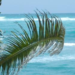 São Miguel dos Milagres 26 beach hotels