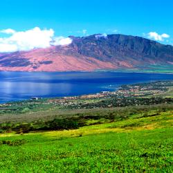 Kihei 465 vacation rentals