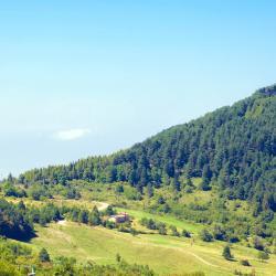 San Pietro In Cerro 3 hotellia