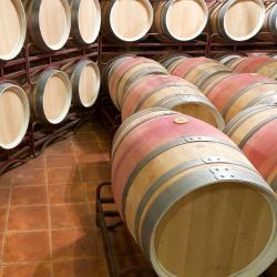 Castañares de Rioja 5 hotelů