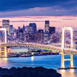 Tokyo 279 accessible hotels