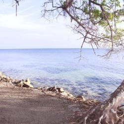 Isla Palma 2 hotels