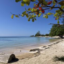 Utila 15 holiday rentals