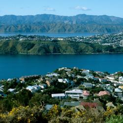 Lower Hutt 31 Hotels