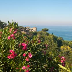 Vasto 55 bed & breakfast
