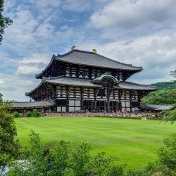 Nara 147 hoteles