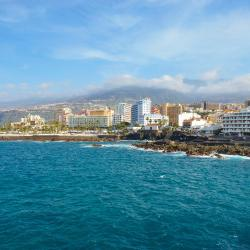 Puerto de la Cruz 72 pet-friendly hotels