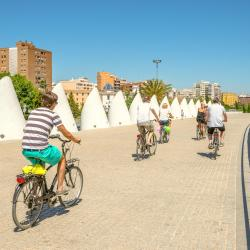 Valencia 1076 Self-catering Properties
