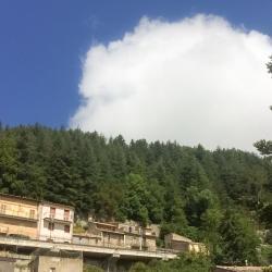 Floresta 2 hotels