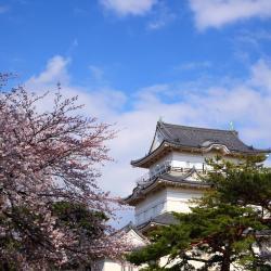 Odawara 33 hotellia