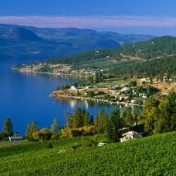 Kelowna 30 Bed & Breakfasts