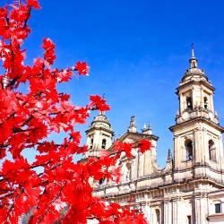 Bogotá 635 holiday rentals