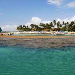 Porto De Galinhas 195 accessible hotels