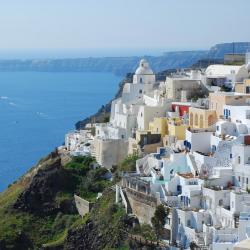 Fira 54 pet-friendly hotels