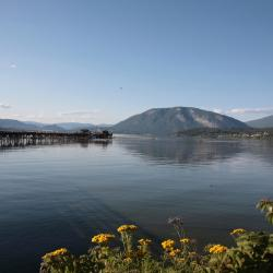 Salmon Arm 8 hotels