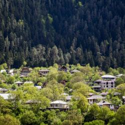 Borjomi 155 homestays