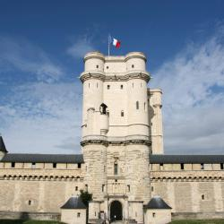 Saint-Thibault-des-Vignes 4 hotela