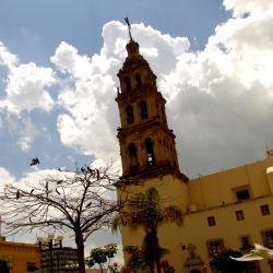 León 173 hoteles