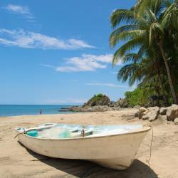 Rincón de Guayabitos 7 hoteles que admiten mascotas