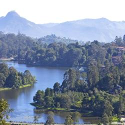 Kodaikanal 17 resorts