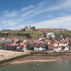 Whitby 88 bed & breakfast