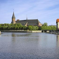 Kaliningrad 40 hotels with pools