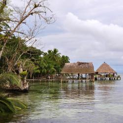 Boca del Drago 2 hotels