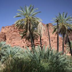 Al-ʿUla 35 vacation rentals