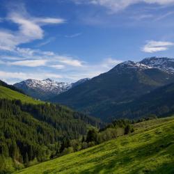 Ried im Zillertal 12 pet-friendly hotels