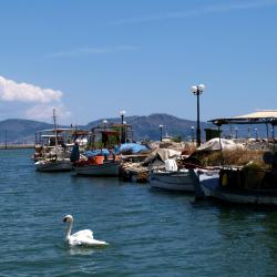 Νέα Κίος 5 ξενοδοχεία
