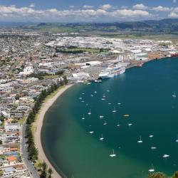 Tauranga 30 bed and breakfasts