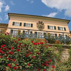 Geisenheim 10 Hotels