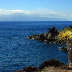 La Playa Calera 5 hotels
