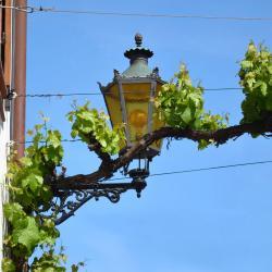 Frankenthal 12 Hotels