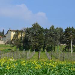Sant' Alessio 8 Hotels