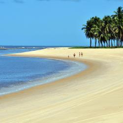 Barra de Santo Antônio 7 beach hotels