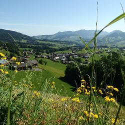 Schwarzenberg im Bregenzerwald 43 Hotels