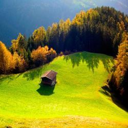 Wald am Arlberg 26 hotels