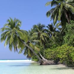 Athuruga Island 1 hotel