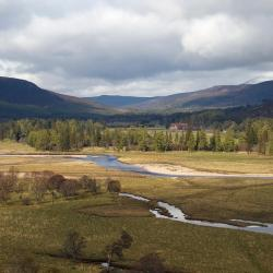 Grantown on Spey 46 hotels