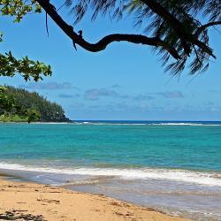 Tanna Island 5 holiday rentals