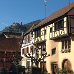 Ribeauvillé 77 hotels