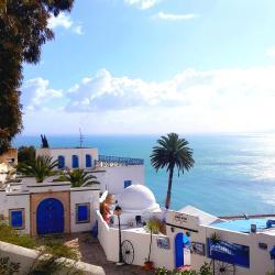 Sidi Bou Saïd 40 hôtels