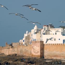Ghazoua 4 maisons d'hôtes