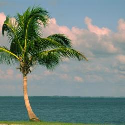North Palm Beach 5 hotels