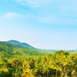 Ban Khlong Mae Nam 2 Hotels