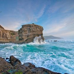 Muriwai Beach 4 hotels