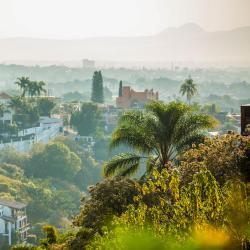 Emiliano Zapata 4 hoteles que admiten mascotas